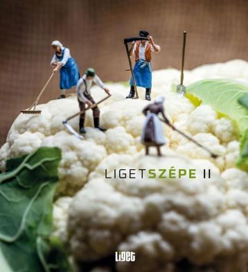 LIGETSZÉPE II. - Ebook - HORGAS JUDIT ET AL.