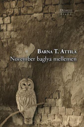 NOVEMBER BAGLYA MELLEMEN - Ebook - BARNA T. ATTILA