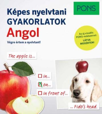 PONS KÉPES NYELVTANI GYAKORLATOK ANGOL - Ekönyv - CARTER, TIM , HEMINGWAY, SAMUEL