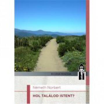 HOL TALÁLOD ISTENT? - Ebook - NÉMETH NORBERT