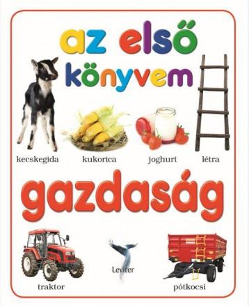 GAZDASÁG - Ebook - LEVITER KIADÓ