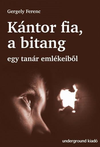 KÁNTOR FIA A BITANG - EGY TANÁR EMLÉKEIBŐL - Ebook - GERGELY FERENC