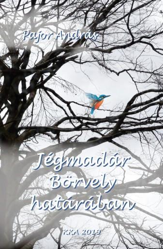 JÉGMADÁR BÖRVELY HATÁRÁBAN - Ebook - PAJOR ANDRÁS