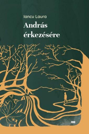 ANDRÁS ÉRKEZÉSÉRE - Ekönyv - IANCU LAURA