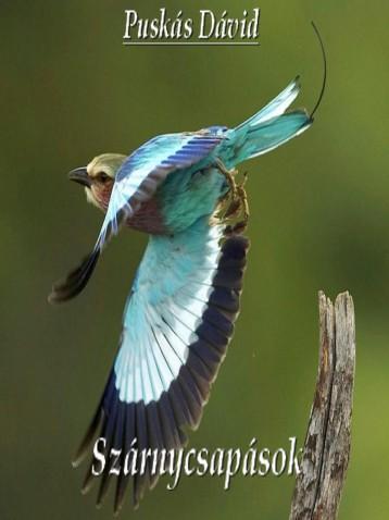 Szárnycsapások - Ekönyv - Puskás Dávid