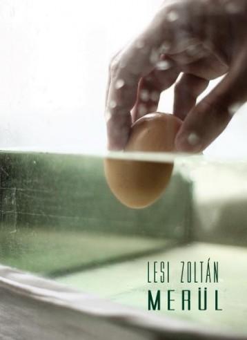 MERÜL - Ekönyv - LESI ZOLTÁN