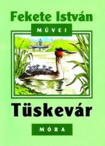 TÜSKEVÁR - ÚJ BORÍTÓVAL - Ekönyv - FEKETE ISTVÁN