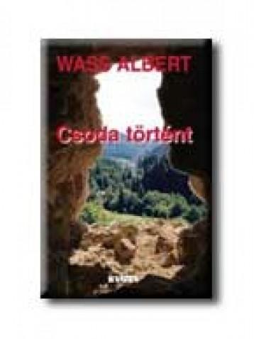 CSODA TÖRTÉNT - FŰZÖTT - - Ekönyv - WASS ALBERT