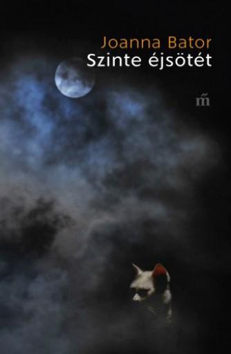 Szinte éjsötét - Ekönyv - Joanna Bator
