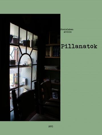 Pillanatok - Ekönyv - Freisleben Attila