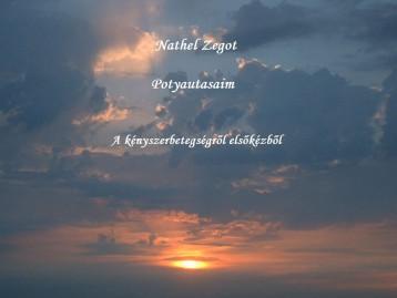 Potyautasaim - Ekönyv - Nathel Zegot