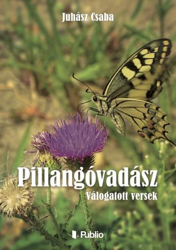 PILLANGÓVADÁSZ - Ekönyv - Juhász Csaba