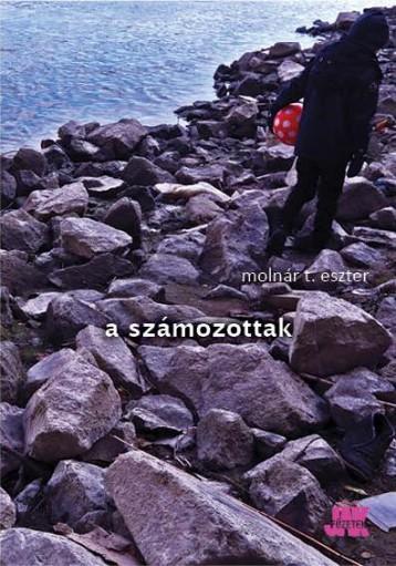 A SZÁMOZOTTAK - Ekönyv - MOLNÁR T. ESZTER