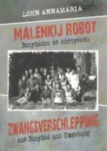 MÁLENKIJ ROBOT - BONYHÁDON ÉS KÖRNYÉKÉN - Ekönyv - LOHN ANNAMÁRIA