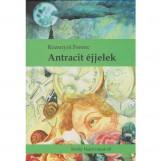 ANTRACIT ÉJJELEK - Ekönyv - ROZSNYÓI FERENC