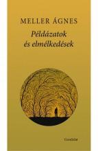 PÉLDÁZATOK ÉS ELMÉLKEDÉSEK - ÜKH 2017 - Ekönyv - MELLER ÁGNES