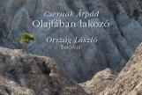 OLAJFÁBAN LAKOZÓ - ÜKH 2017 - Ekönyv - CSERNÁK ÁRPÁD - ORSZÁG LÁSZLÓ