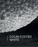 WHITE - Ekönyv - FOSTER, COLIN