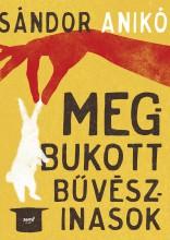 MEGBUKOTT BŰVÉSZINASOK - Ekönyv - SÁNDOR ANIKÓ