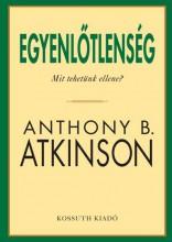 EGYENLŐTLENSÉG - MIT KELLENE TENNÜNK? - Ekönyv - ATKINSON, ANTHONY B.