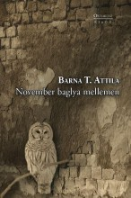 NOVEMBER BAGLYA MELLEMEN - Ekönyv - BARNA T. ATTILA