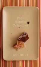GYŰLÖLET - Ekönyv - PAPP SÁNDOR ZSIGMOND