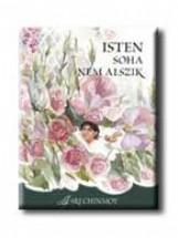 ISTEN SOHA NEM ALSZIK - Ekönyv - CHINMOY, SRI