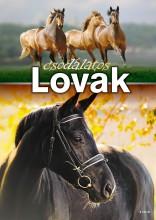 CSODÁLATOS LOVAK - Ekönyv - TÓTH KÖNYVKERESKEDÉS ÉS KIADÓ KFT.