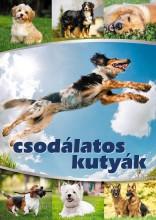 CSODÁLATOS KUTYÁK - Ekönyv - TÓTH KÖNYVKERESKEDÉS ÉS KIADÓ KFT.