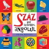 Száz... angolul - Száz kép színekkel angolul - Ekönyv - NAPRAFORGÓ KÖNYVKIADÓ