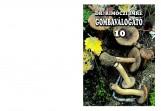 GOMBAVÁLOGATÓ 10. - Ebook - DR. RIMÓCZI IMRE