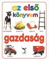 GAZDASÁG - Ekönyv - LEVITER KIADÓ