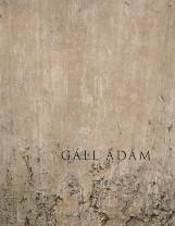 ELTŰNÉSMINTÁZATOK - Ekönyv - GÁLL ÁDÁM