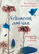 FELISMERNI, AMI VAN - Ekönyv - HÖVEL, GABRIELE TEN- HELLINGER, BERT