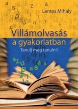 VILLÁMOLVASÁS A GYAKORLATBAN - Ebook - LANTOS MIHÁLY