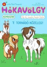 HÓKAVÖLGY 7. - TORNÁDÓ KÖZELEG! - Ekönyv - GYÜKÉR ZSÓFIA