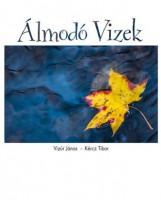 ÁLMODÓ VIZEK - Ekönyv - VIZÚR JÁNOS - KÉRCZ TIBOR