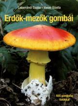 ERDŐK-MEZŐK GOMBÁI - Ekönyv - LOCSMÁNDI CSABA - VASAS GIZELLA