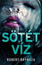 SÖTÉT VÍZ - ERIKA FOSTER NYOMOZ 3. - Ekönyv - BRYNDZA, ROBERT