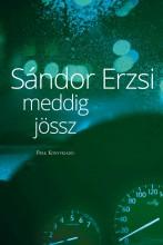 MEDDIG JÖSSZ - ÜKH 2019 - Ebook - SÁNDOR ERZSI