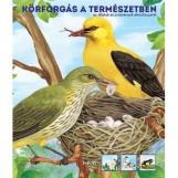KÖRFORGÁS A TERMÉSZETBEN - AZ ÁLLATOK ÉS A NÖVÉNYEK ÉLETCIKLUSAIRÓL - Ekönyv - TKK