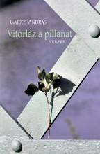 VITORLÁZ A PILLANAT - Ebook - GAJDOS ANDRÁS