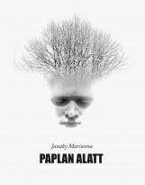 PAPLAN ALATT - Ekönyv - JANÁKY MARIANNA