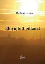 ELNYÚJTOTT PILLANAT - Ekönyv - RADNAI ISTVÁN