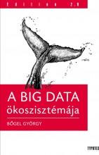 A BIG DATA ÖKOSZTISZTÉMÁJA - Ekönyv - BŐGEL GYÖRGY