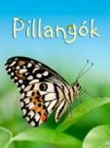 PILLANGÓK (KIS KÖNYVÁR) - Ekönyv - TURNBULL, STEPHANIE