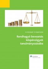 Rendhagyó bevezetés közpénzügyek tanulmányozásába - Ekönyv - Dr. Sivák József, Dr. Vigvári András
