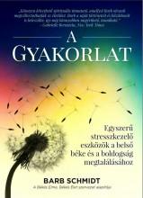 A GYAKORLAT - EGYSZERŰ STRESSZKEZELŐ ESZKÖZÖK... - Ekönyv - SCHMIDT, BARB
