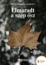 Elmaradt a szép ősz - Ekönyv - Bolgárfalvi Z Károly