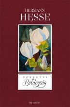 SZERETNI BOLDOGSÁG - Ekönyv - HESSE, HERMANN